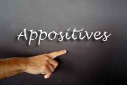 Improve_Your_Understanding_of_Appositives_photo_FINALIZED