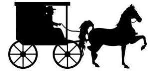 amish_horse_buggy_03